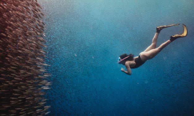 Apnoetauchen – Wissenswertes zum Freediving