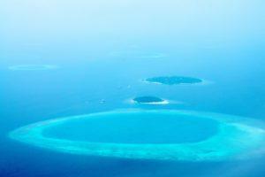 Meeresschildkroete Heimat Malediven