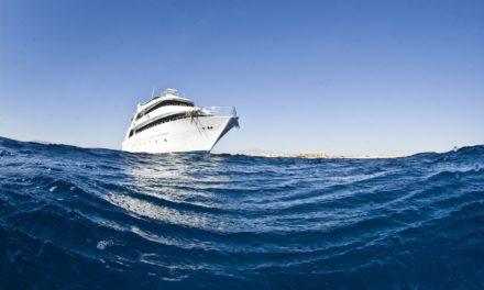 Tauchsafari Malediven – Tauchen der Extraklasse
