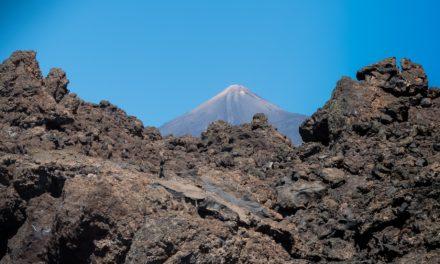 Tauchen auf Teneriffa – Fasziniernde Unterwasserwelt